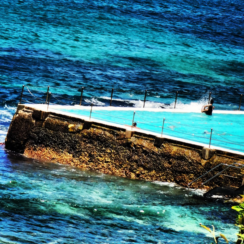 Bondi swimming I