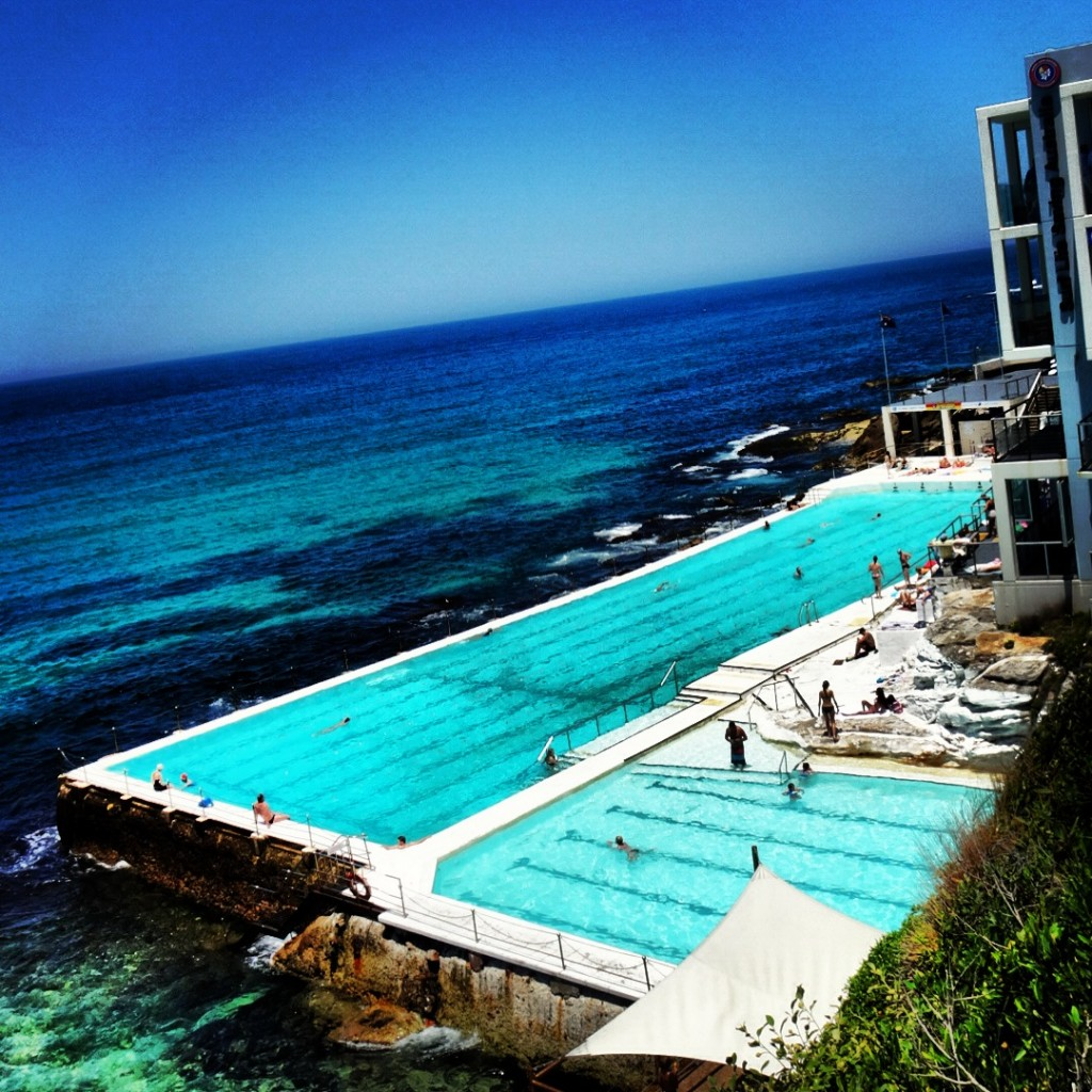 Bondi swimming II