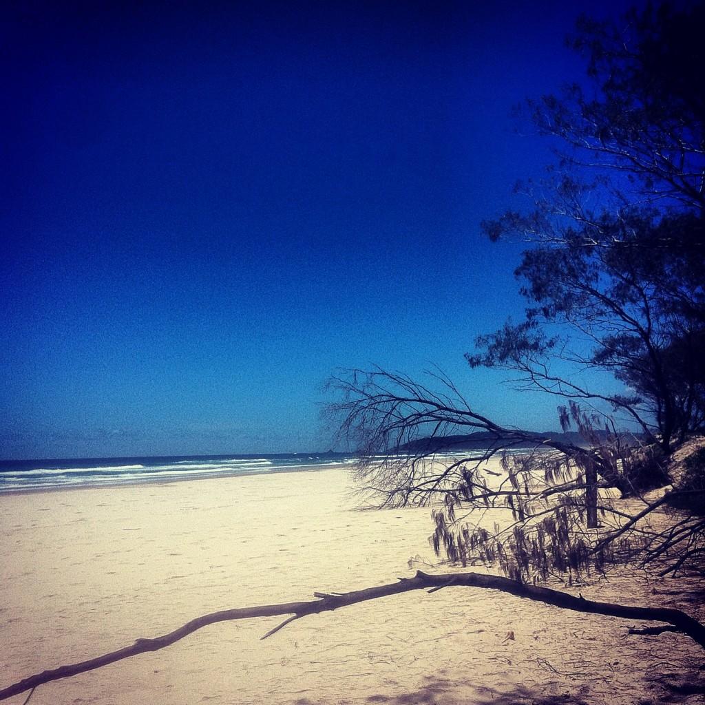 ... beach ...