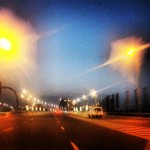 Palm lights